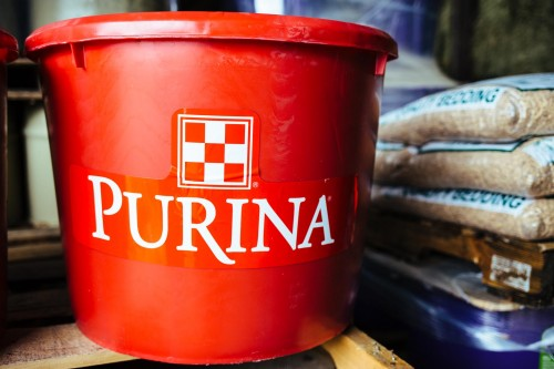 purina-tub-cattle