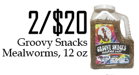 Groovy Snacks Mealworms